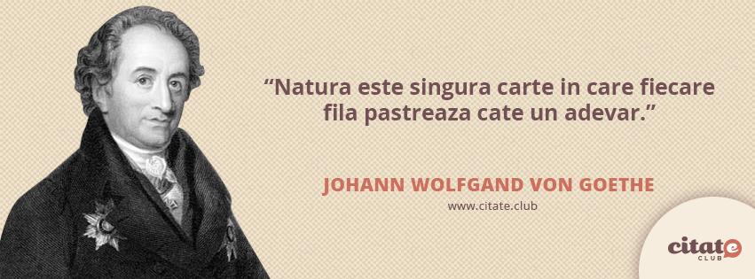 Citaten Goethe : Natura este singura carte citate celebre